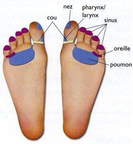 rhume-reflexologie